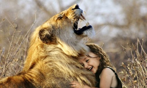 Safe in the lion's den<br>There's a way to lighten the load<br>(3 Minute Read)